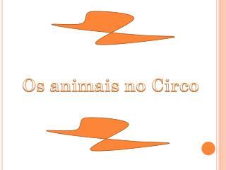 Os animais no Circo