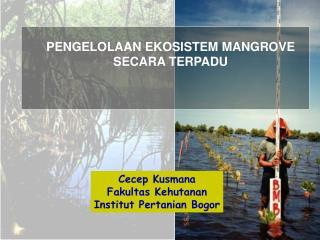 Cecep Kusmana Fakultas Kehutanan Institut Pertanian Bogor