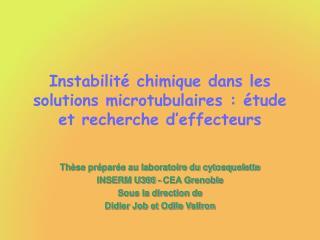 Instabilit� chimique dans les solutions microtubulaires : �tude et recherche d�effecteurs