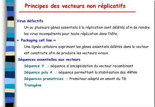 Principes des vecteurs non r plicatifs