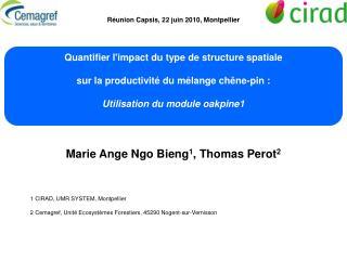 Marie Ange Ngo Bieng 1 , Thomas Perot 2