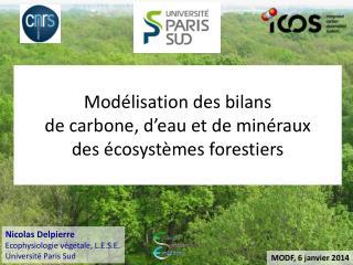 Modélisation des bilans  de carbone, d'eau et de minéraux  des écosystèmes forestiers
