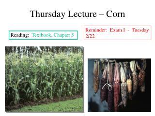 Thursday Lecture   Corn