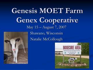 Genesis MOET Farm Genex Cooperative