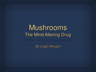 Mushrooms The Mind Altering Drug