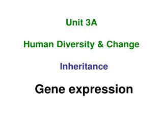Unit 3A Human Diversity & Change