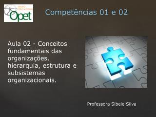 Professora Sibele Silva