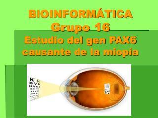 BIOINFORMÁTICA Grupo 16 Estudio del gen PAX6 causante de la miopía