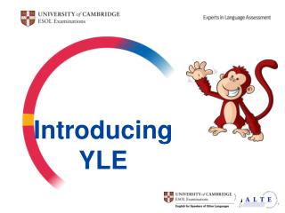 Introducing YLE