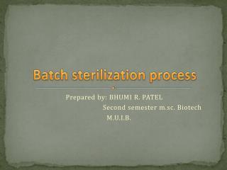 B atch sterilization process