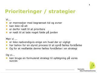 Prioriteringer / strategier
