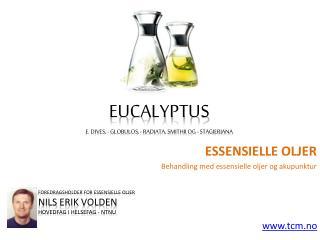Essensielle oljer - Eucalyptus