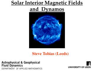 Solar Interior Magnetic Fields and  Dynamos