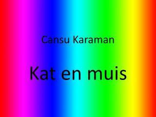 Gedicht: Kat en muis Cansu  karaman