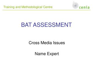 BAT ASSESSMENT