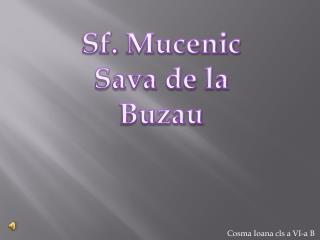 Sf.  Mucenic  Sava de la Buzau