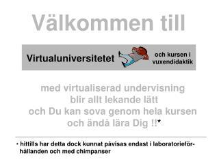 Virtualuniversitetet