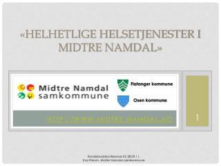 �Helhetlige helsetjenester i Midtre Namdal�