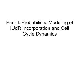 Part II: Probabilistic Modeling of IUdR Incorporation and Cell Cycle Dynamics