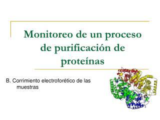 Monitoreo de un proceso de purificación de proteínas