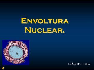Envoltura Nuclear.