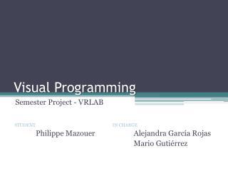 Visual Programming