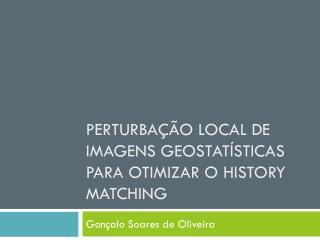 Perturbação local de imagens geostatísticas para otimizar o  history matching