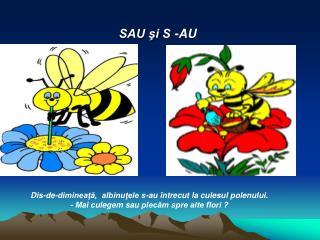 SAU şi S -AU