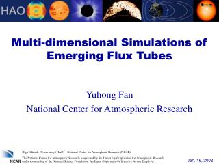 Multi-dimensional Simulations of Emerging Flux Tubes