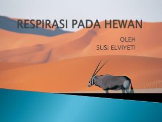 RESPIRASI PADA HEWAN