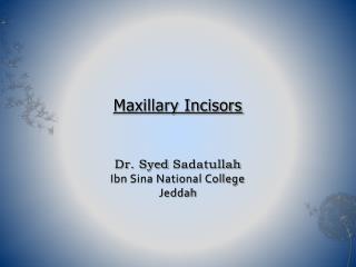Maxillary Incisors    Dr. Syed Sadatullah Ibn Sina National College Jeddah