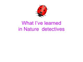 What I've learned  in Nature  detectives
