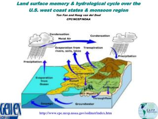 Land surface memory & hydrological cycle over the  U.S. west coast states & monsoon region