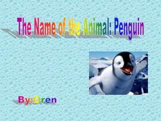 The Name of the Animal: Penguin