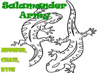 Salamander  Army