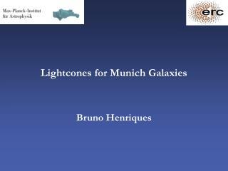 Lightcones for Munich Galaxies