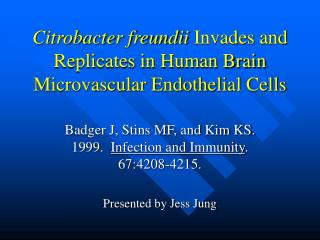 Citrobacter freundii Invades and Replicates in Human Brain Microvascular Endothelial Cells