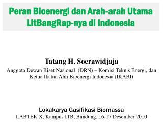 Peran Bioenergi dan Arah-arah Utama LitBangRap-nya di Indonesia