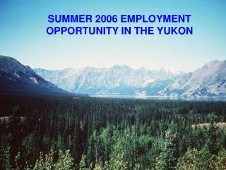 SUMMER 2006 EMPLOYMENT OPPORTUNITY IN THE YUKON