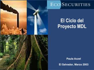 El Ciclo del Proyecto MDL