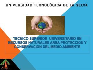 UNIVERSIDAD TECNOLÓGICA DE LA SELVA