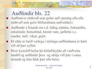 Auðlindir bls. 22