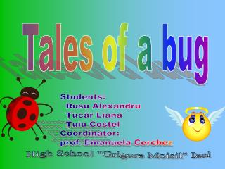 Tales of a bug