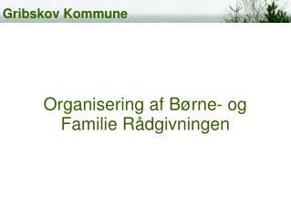 Organisering af Børne- og Familie Rådgivningen