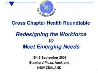 Cross Chapter Health Roundtable  Redesigning the Workforce to Meet Emerging Needs