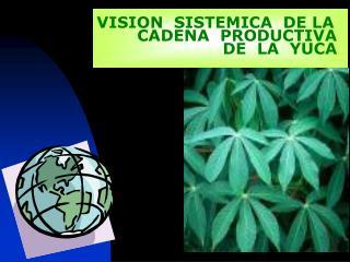 VISION  SISTEMICA  DE LA   CADENA  PRODUCTIVA                  DE  LA  YUCA
