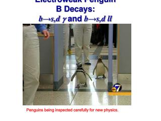 Electroweak Penguin  B Decays: b ? s,d  g  and  b ? s,d ll