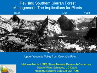 Revising Southern Sierran Forest Management: The Implications for Plants