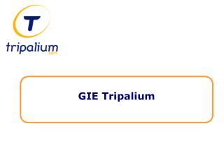 Objectifs du GIE Tripalium ?