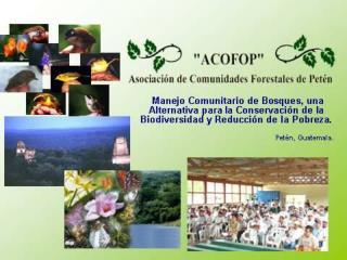 Creaci�n de la reserva de la Biosfera Maya